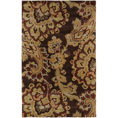 Busch Chocolate Rug Rug Size: Rectangle 5 x 8
