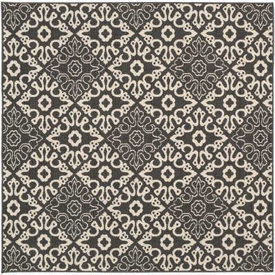 Pearce Black/Cream Indoor/Outdoor Area Rug Rug size: Square 89
