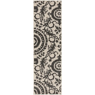 Hattie Parchment & Pewter Indoor/Outdoor Rug Rug Size: Runner 23 x 79