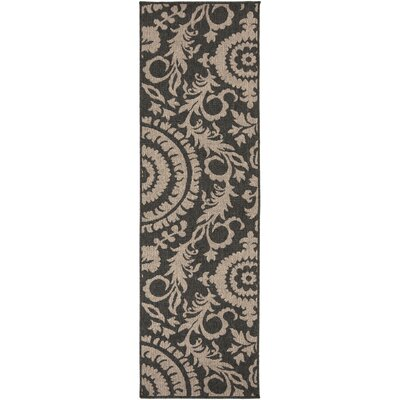 Alfresco Black/Camel Indoor/Outdoor Area Rug Rug size: Runner 23 x 79