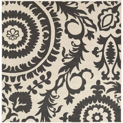 Hattie Parchment & Pewter Indoor/Outdoor Rug Rug Size: Square 89