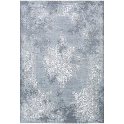Pickrell Distressed White/Pale Blue Area Rug Rug Size: Runner 27 x 71