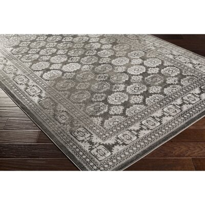 Broadview Gray Area Rug Rug Size: Rectangle 22 x 3