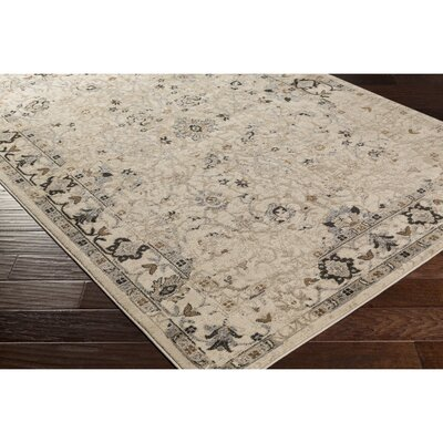 Broadview Multi-Colored Area Rug Rug Size: Rectangle 78 x 106
