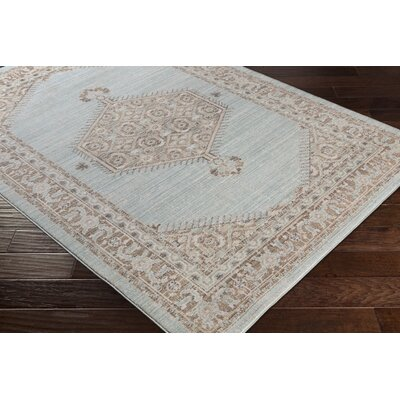 Almaraz Sea Foam/Camel Area Rug