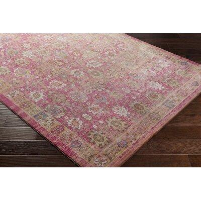 Almaraz Bright Pink/Pale Pink Area Rug