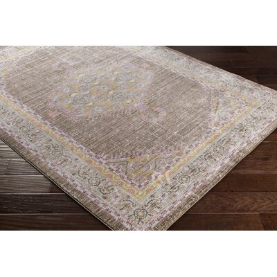 Almaraz Distressed Bright Pink/Dark Brown Area Rug