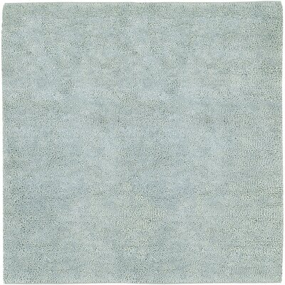 Bonney Spa Blue Area Rug Rug Size: Square 8