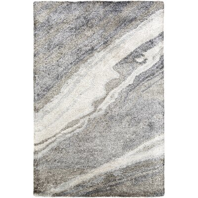 Scylla Ivory/Light Gray Area Rug Rug Size: Rectangle 2 x 3