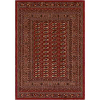 Sedra - Red 2 x 3 3 Premium Wool Area Rug Rug Size: 7 10 x 10 10