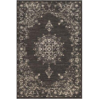 Kaitlyn Vintage Dark Brown/Beige Area Rug Rug Size: 7 10 x 10 6