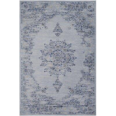 Kaitlyn Vintage Blue/Navy Area Rug Rug Size: 7 10 x 10 6