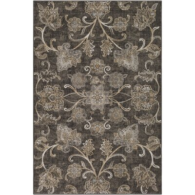 Kaitlyn Brown Area Rug Rug Size: 5 3 x 7 6