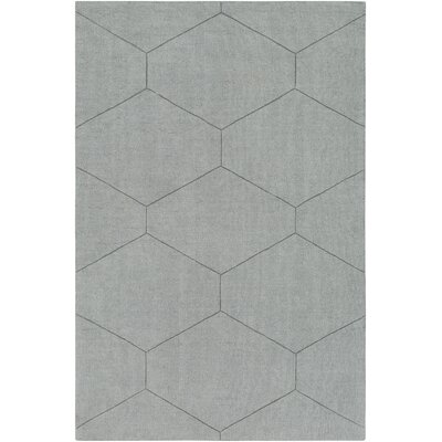 Belle Hand-Loomed Light Gray Area Rug Rug Size: Rectangle 5 x 76