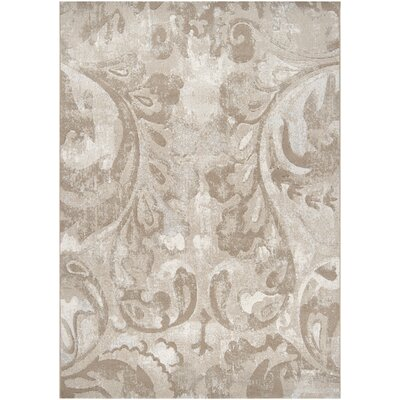 Crawford Gray Area Rug Rug Size: Rectangle 53 x 76