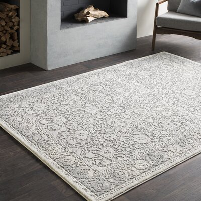 Tilleul Traditional Persian Distressed Gray Area Rug Rug Size: Rectangle 53 x 76