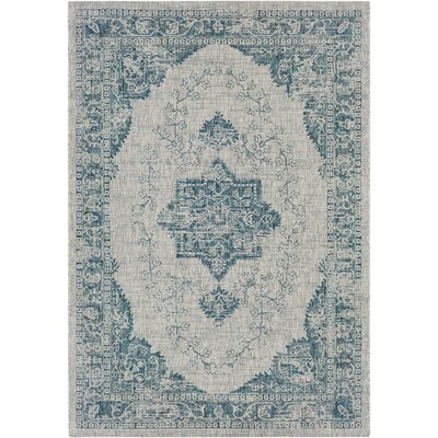 Fonwharyl Aqua Area Rug Rug Size: Rectangle 53 x 76
