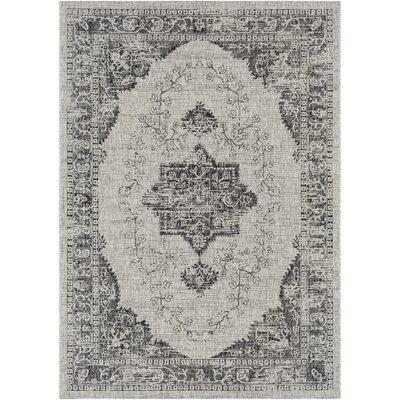 Fonwhary Classic Gray Indoor/Outdoor Area Rug Rug Size: Rectangle 53 x 76