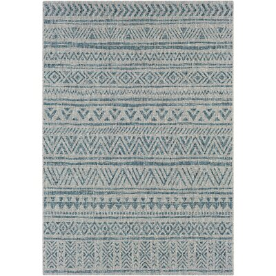 Fonwhary Aqua Indoor/Outdoor Area Rug Rug Size: Rectangle 5'3