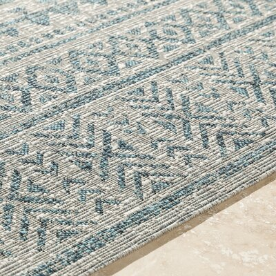 Fonwhary Aqua Indoor/Outdoor Area Rug Rug Size: 2 x 3