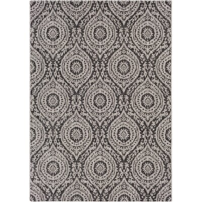 Fonwhary Medallions Gray Indoor/Outdoor Area Rug Rug Size: Rectangle 2 x 3