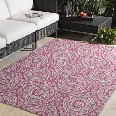 Fonwhary Bright Pink/Light Gray Indoor/Outdoor Area Rug Rug Size: 2 x 3