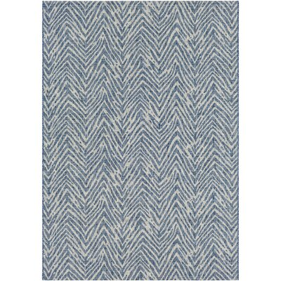 Fonwhary Denim Indoor/Outdoor Area Rug Rug Size: Rectangle 2 x 3