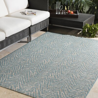 Fonwhary Aqua Indoor/Outdoor Area Rug Rug Size: Rectangle 2 x 3