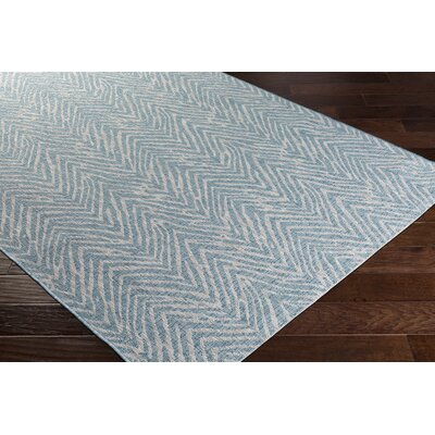 Fonwhary Aqua Indoor/Outdoor Area Rug Rug Size: 53 x 76
