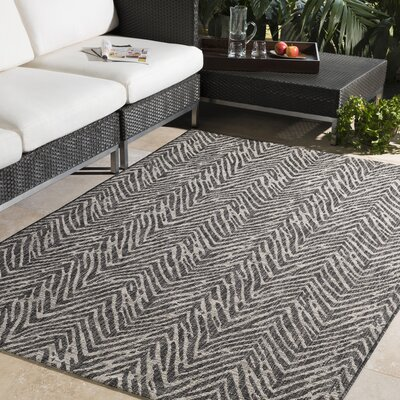 Fonwhary Gray Indoor/Outdoor Area Rug Rug Size: 53 x 76