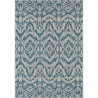 Fonwhary Aqua Indoor/Outdoor Area Rug Rug Size: 710 x 103