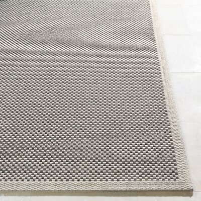 Sarang Light Gray Indoor/Outdoor Area Rug Rug Size: Rectangle 2 x 3