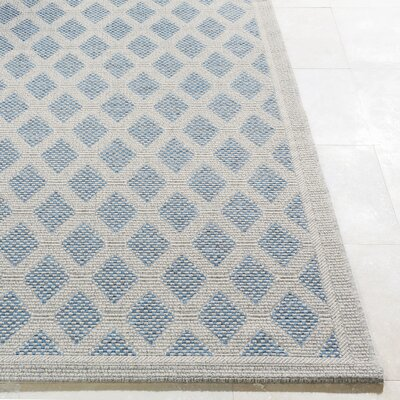 Sarang Light Gray/Blue Indoor/Outdoor Area Rug Rug Size: Rectangle 5 x 76
