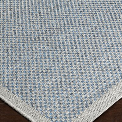 Sarang Sky Blue Indoor/Outdoor Area Rug Rug Size: 2 x 3