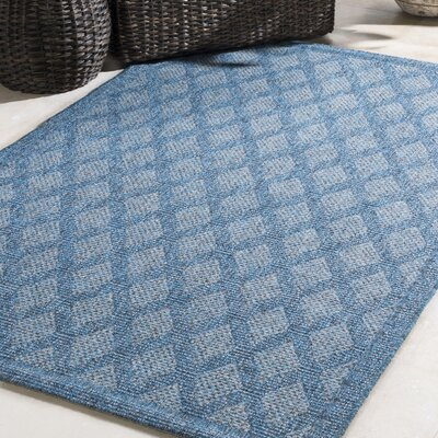 Sarang Sky Blue Indoor/Outdoor Area Rug Rug Size: Rectangle 5 x 76