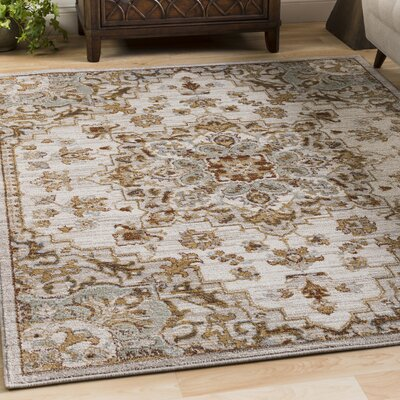Lenora Classic Floral and Plants Light Gray Indoor/Outdoor Area Rug Rug Size: 67 x 96