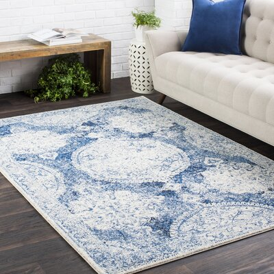 Downs Distressed Vintage Medallion Blue/White Area Rug Rug Size: 27 x 73
