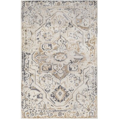 Nicole Tan/Charcoal Area Rug Rug Size: Rectangle 53 x 73