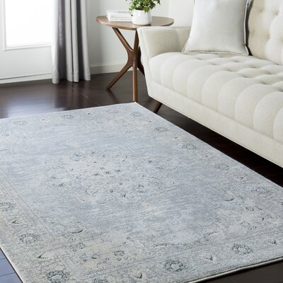 Synthia Light Gray Area Rug Rug Size: Rectangle 53 x 73