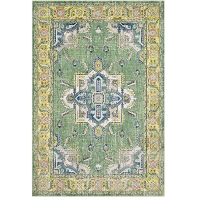 Tillamook Silk Distressed Floral Dark Green/Lime Area Rug Rug Size: Rectangle 53 x 76