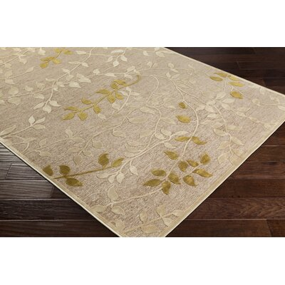 Holoman Transitional Floral Beige/Yellow Area Rug Rug Size: Rectangle 52 x 76