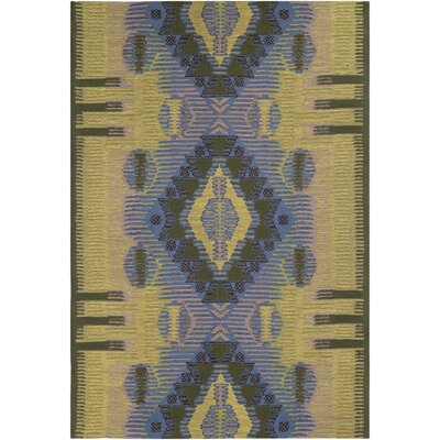 Sturbridge Hand-Woven Lime/Denim/Dark Brown Outdoor Area Rug Rug Size: Rectangle 4 x 6