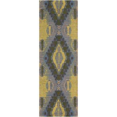 Sturbridge Hand-Woven Lime/Denim/Dark Brown Outdoor Area Rug Rug Size: Runner 26 x 8