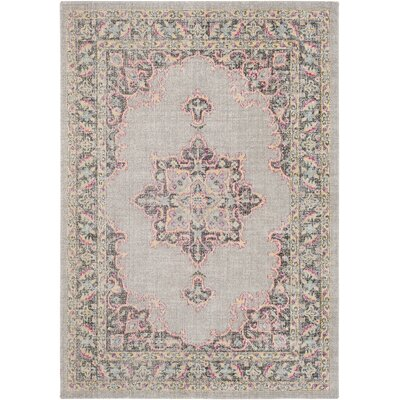 Barnegat Distressed Medium Gray/Bright Pink Area Rug Rug Size: Rectangle 2 x 3