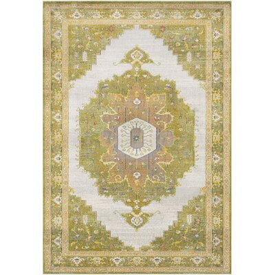 Lillo Distressed Traditional Lime/Tan Area Rug Rug Size: Rectangle 53 x 76