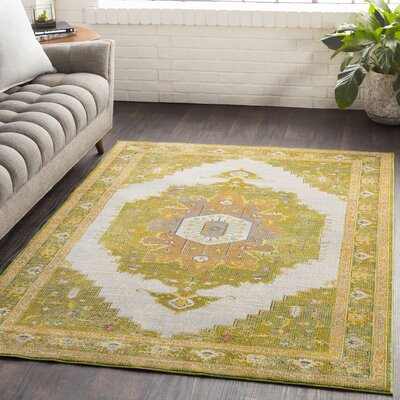 Lillo Distressed Traditional Lime/Tan Area Rug Rug Size: Runner 23 x 76