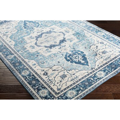 Lillo Distressed Sky Blue Area Rug Rug Size: Runner 27 x 76