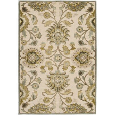 Cashwell Oriental Beige/Carolina Blue Area Rug Rug Size: Rectangle 52 x 76