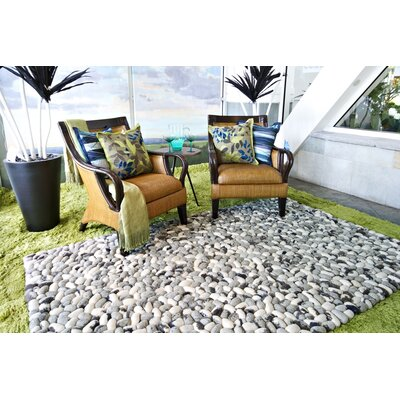 Summit Gray Rug Rug Size: Rectangle 36 x 56