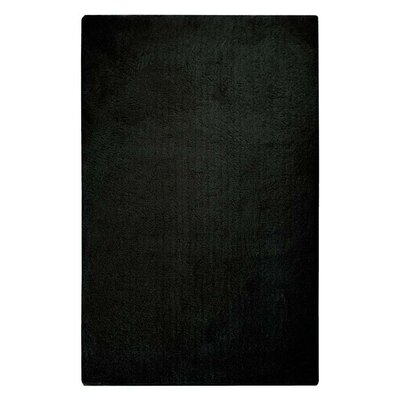 Braun Hand Woven Coal Black Area Rug Rug Size: Rectangle 76 x 96